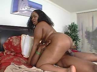 Black guy drills ebony plumper in doggy style